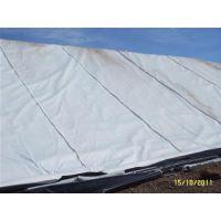 土工膜(已认证),土工布,短丝土工布价格