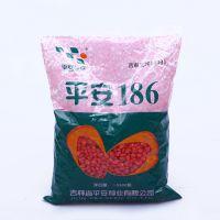 平安186 优质新型高产早熟玉米种 高成活率 高发芽率 5500粒