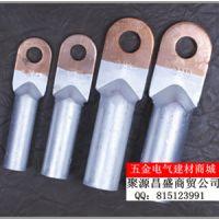 批发铜铝过渡鼻子 线鼻子 接线端子 DTL-120铜铝端子 A级 国标