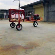 大棚喷雾器 杀虫专用喷雾器高压泵喷药机 质保打药机直销
