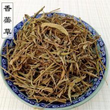 供应香薷草,水益母、接骨草、土薄荷、鱼香草