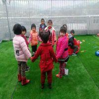 雅琦厂家直销幼儿园草坪人造草坪价格