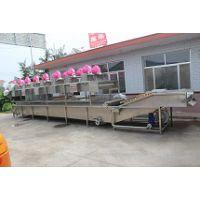 供应叶菜类蔬菜清洗机,果蔬加工设备,弘发制造