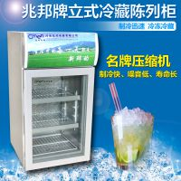 雪川小型商用/家用饮料柜 饮料展示柜冷藏展示柜饮料柜保鲜柜啤酒