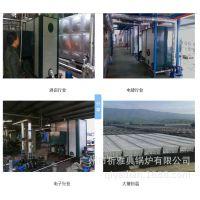 生物质热水炉/酒店热水炉/祈雅典炉