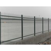 SS山东省泰安市 锌钢围栏,锌钢围墙护栏,锌钢栅栏,护栏网Q195护栏型材,网片护栏,草坪护栏