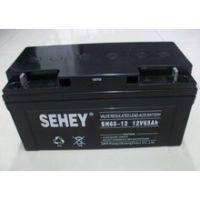 西力蓄电池12V65AH SEHEY SH65-12蓄电池 UPS蓄电池
