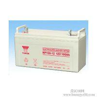 河南东洋TOYO蓄电池6GFM50/12V50AH铅酸蓄电池