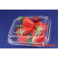 A2水果盒/糕点塑料包装盒/食品级塑料包装盒/塑料透明水果盒