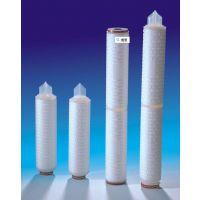 广州10寸30微米聚丙烯微孔膜折叠滤芯直销