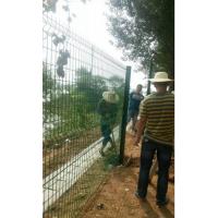 浠水农户种番茄田地防护围栏质量好便宜厂家/西红柿蔬菜种植隔离网价格