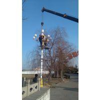 光谷新能源GG-ld-091九头中华灯8米中华灯政府专用灯威严霸气的路灯