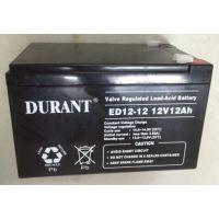 湖南艾德迅供应铅酸免维护蓄电池 UPS电池 杜兰特DURANT 河南铅酸免维护蓄电池