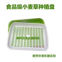 优质纯原料双层种植盘芽菜盘育苗盘小麦草专用种植盘