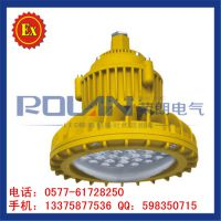 TGF764-LED防爆投光灯 40W 60W