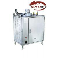 雄飞、XF-ZQJ-50-Q节能蒸汽发生器、广东代理、机械食品加工