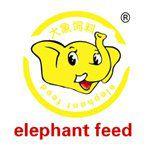 大象饲料请物流 象饲料运输价格 象饲料代理报关