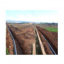 大田土豆节水灌溉技术 节水滴灌技术 节水喷灌技术价格