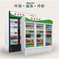 供应深圳英雪超市便利店饮料展示柜