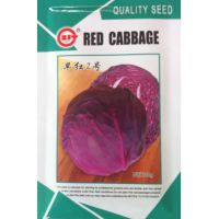 蔬菜种子 早红2号紫甘蓝种子 早熟包菜 抗病耐寒 不易裂球 10g/包