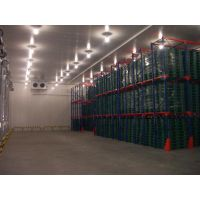 5万吨果蔬保鲜冷库工程设计,水果冷库安装建造、冷库造价预算