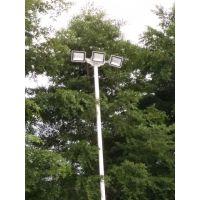 博罗学校篮球场灯杆批发 康腾 6米8米锥形球场灯柱价格 热镀锌灯杆防锈