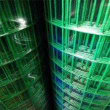 围墙铁丝网批发价格 绿色养鸡铁丝网 广东荷兰网