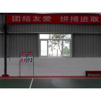 重庆篮球场比赛标准塑胶硅PU地面CH-233型材料,厚度2-8mm可定制