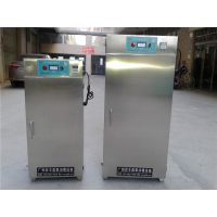 广州百丰BF-GJ-100L 低温烘干臭氧灭菌柜