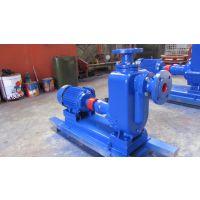 ZW80-25-40 微型自吸排污泵 上海盛也自吸排污泵
