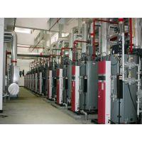 供应YQL系列节能环保导热油炉