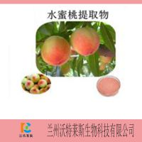 厂家直销 水蜜桃提取物 纯天然 厂家直销 专业提取 现货包邮