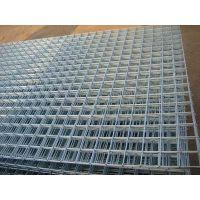 专业生产异型电焊网片--钜钢电焊网片厂家