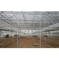 GLP-832型热镀锌钢管透明板连体温室大棚