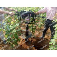 栗子荔枝种植挖坑机 简易手提式挖坑机 免除人工打洞的烦恼