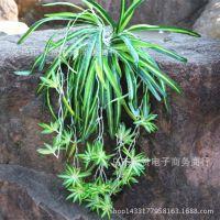 仿真植物吊兰挂壁兰花 绢布假植物吊兰家居美化挂壁兰植物墙配材