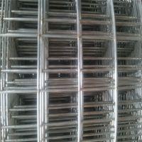 厂家直销304电焊网 小丝不锈钢筛网