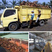 棕榈油生产制造(图)_棕榈油生产设备厂家_棕榈油生产设备
