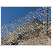专业生产被动防护网 震动筛网 护坡钢丝网 丝网除沫器 钢丝网片