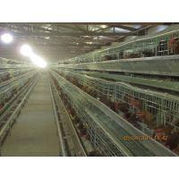供应圈舍全厂空间加湿降温消毒一体机新产品、养殖场自助消毒系统