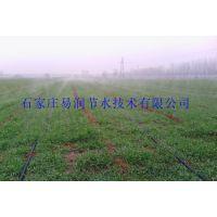 献县农田灌溉设备黑色水带、喷水管报价