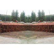 【双赢】环保透水砖【荷兰砖厂家】荷兰砖批发价格【荷兰砖价格】