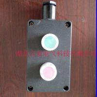 FZA-A2防水防尘防腐主令控制器(按钮启停开关)IP65