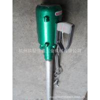 杭州恒通-手提式电动油桶泵