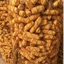 现货50*100钢板网 1.5*10米菱形防护网 圈玉米钢板网