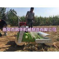突破性蔬菜播种机 小菜籽种植机 润华播种机优势