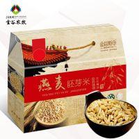 燕麦胚芽米 内蒙古 优质全胚芽燕麦胚芽米 脱毛刺燕麦500gx10袋装 高营养燕麦米