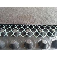 排水板批发销售、绿三江(图)、H20mm排水板批发销售