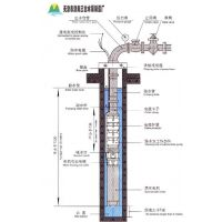 (QJ深井泵/农田灌溉井用潜水电泵/多级深水潜水泵)