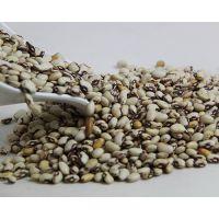 厂家直销低温烘焙五谷杂粮 现磨五谷粉专用原料